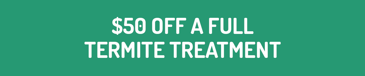 $50 Off A Full Termite Treatment